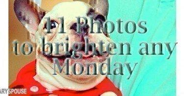 11-photos-to-brighten-any-monday