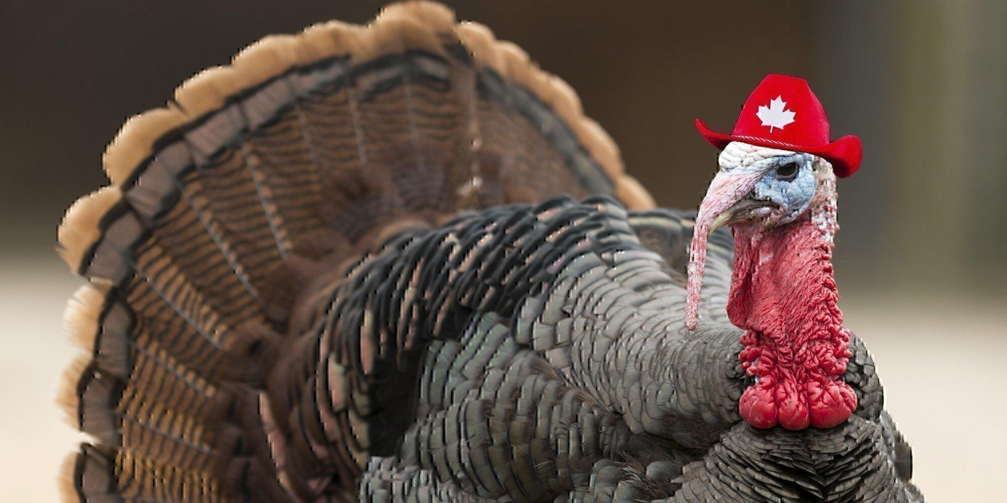 Thanksgiving OCONUS