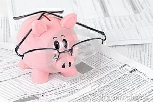 tax-pig
