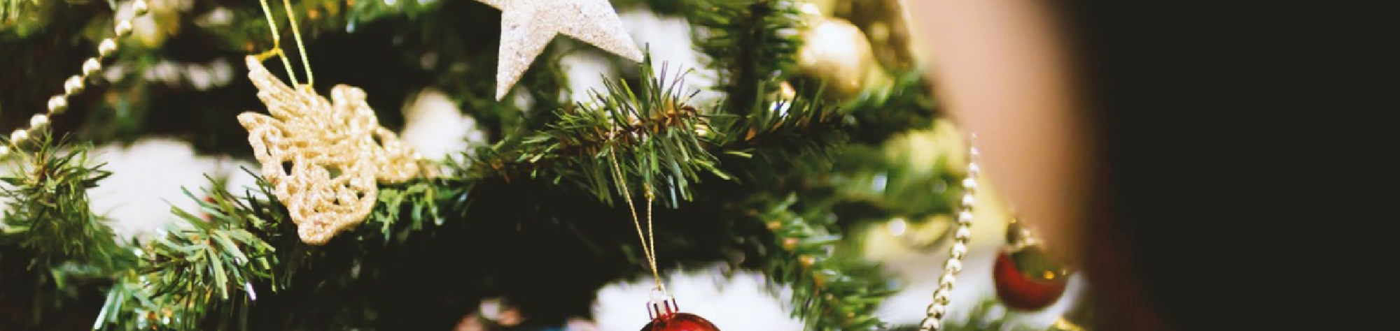 Top 3 Tips for Homeschooling through the Holidays!
